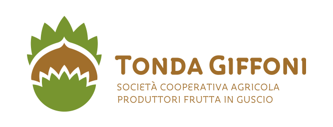 Tonda Giffoni